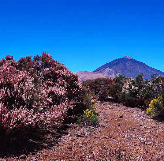 Tenerife trekking holiday
