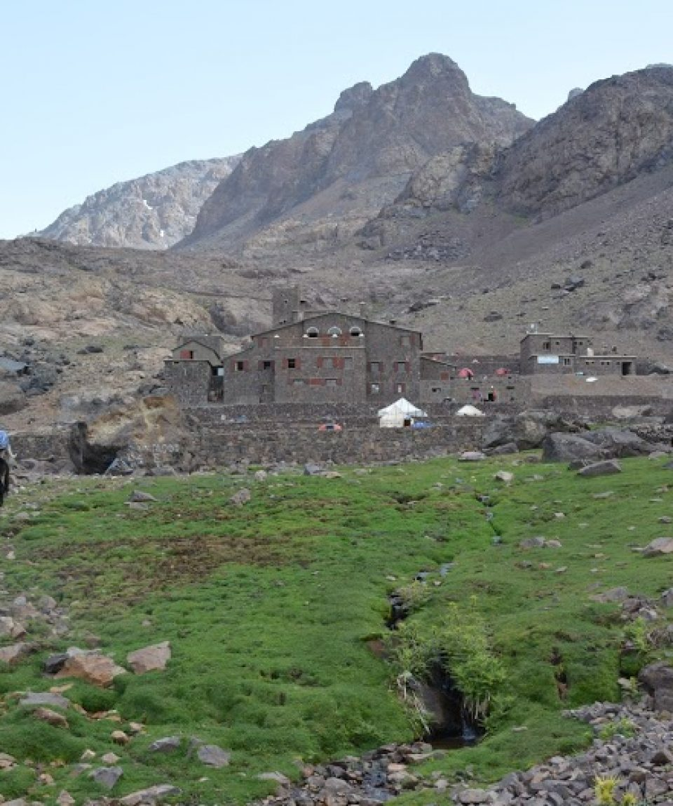 Mules resting at Toubkal base camp